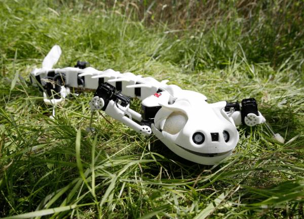 Pleurobot-photo2