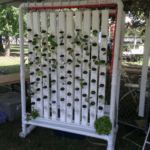 vertical-farm-photo1