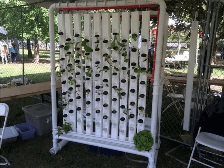 vertical-farm-photo1